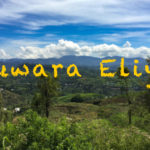 ヌワラエリヤの景色