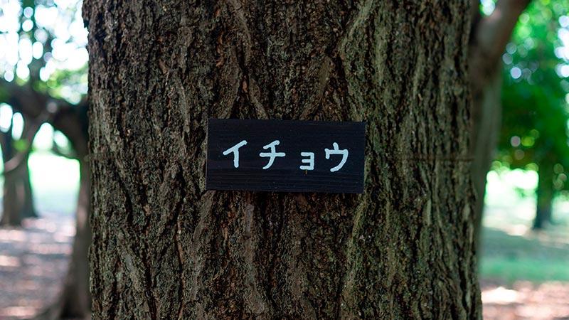 木のネームプレート